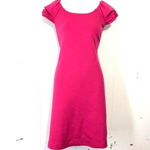 CALVIN KLEIN Pink Ruffle Sleeve Sheath Dress ~sz 4